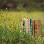 books-field-grass-green-plants-summer-nature-reading-mood